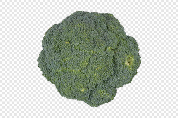 Fresh broccoli — preview