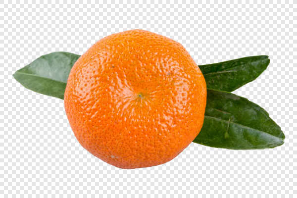 Mandarin with leafs — preview