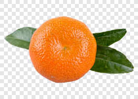 Mandarin with leafs... — preview