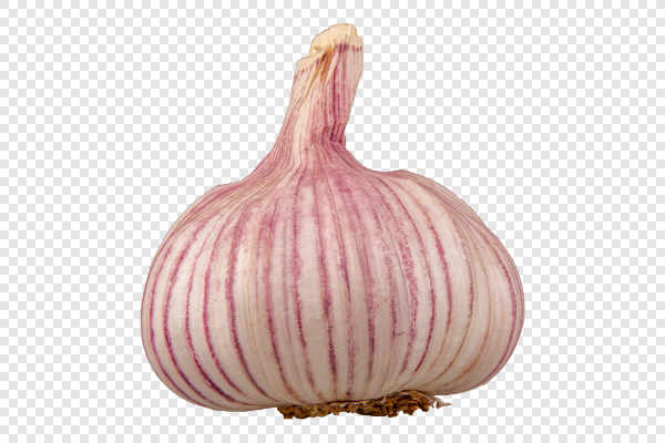 Garlic — preview