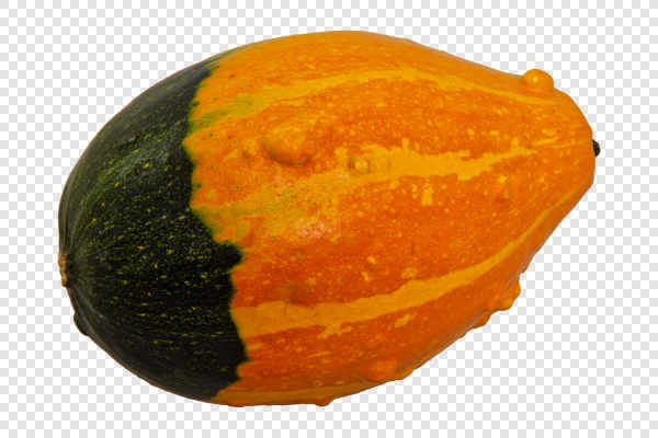 Decorative pumpkin — preview