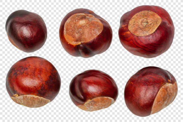 Fresh chestnuts — preview
