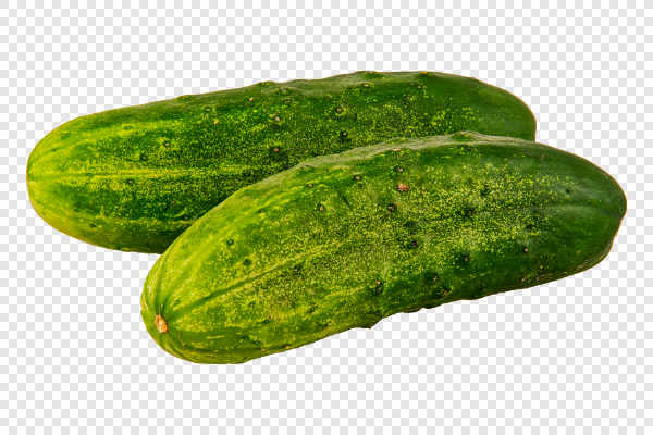Ripe cucumbers — preview