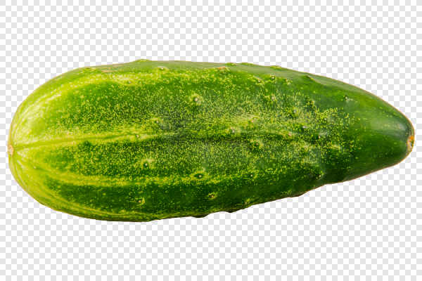 Ripe cucumber — preview