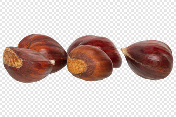 Edible chestnuts — preview