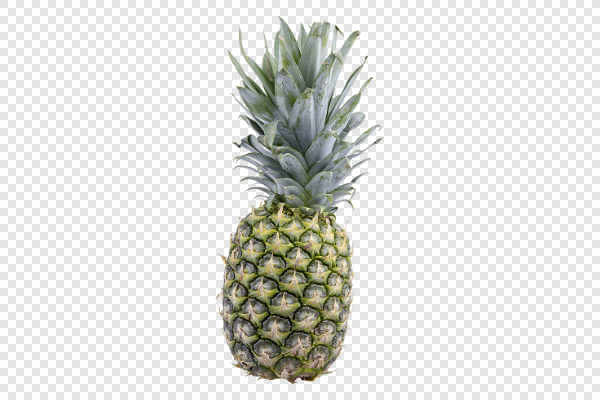 Tropical pineapple... — preview